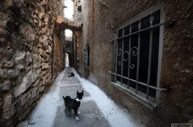 Остров Хиос, Греция. Средневековая мастиховая деревня Пирги